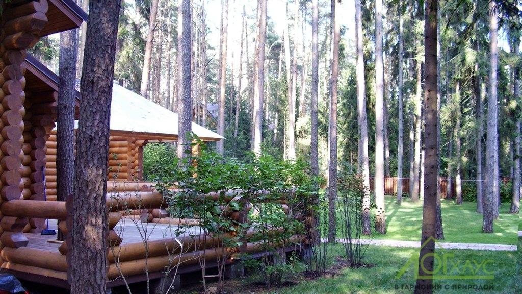 Строительство бревенчатой террасы бани