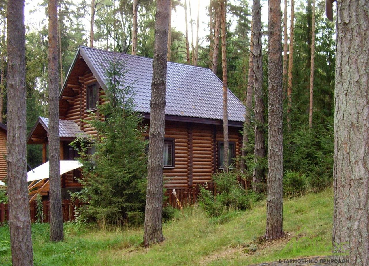 Дом из бревна для базы отдыха