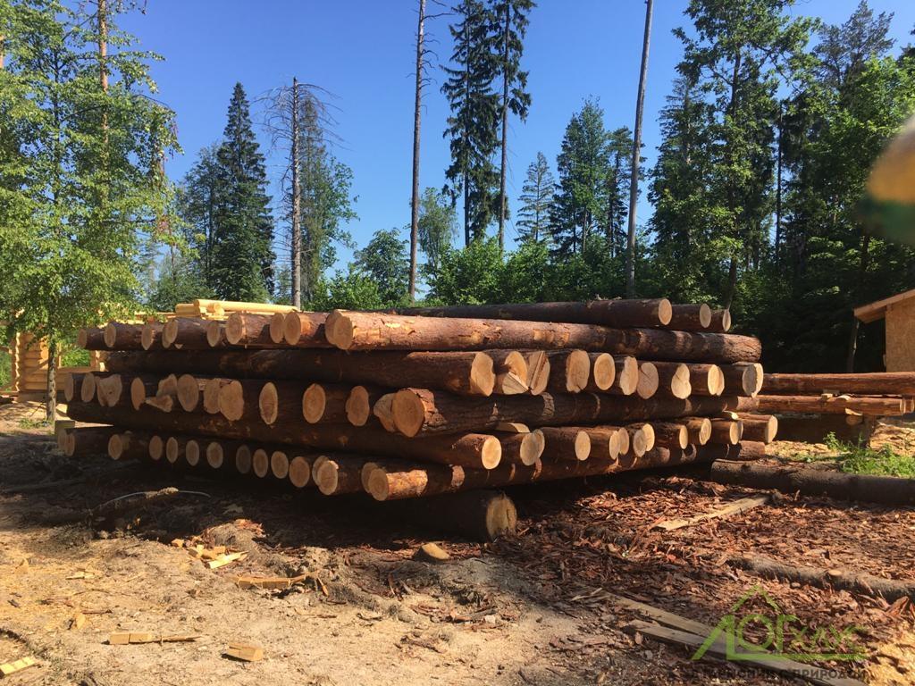 Какие свойства древесины бывают
