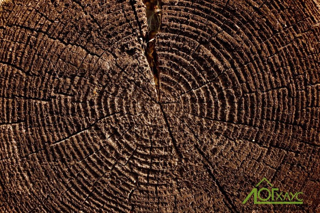 Устранение трещин в деревянном доме